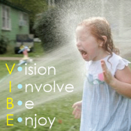 V.I.B.E. Your Way Through the Fire Hoses of Change