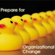 Getting Your Ducks in a Row as You Prepare for Organizational Change