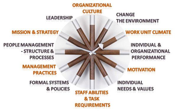 12 Elements of Burke-Litwin Model